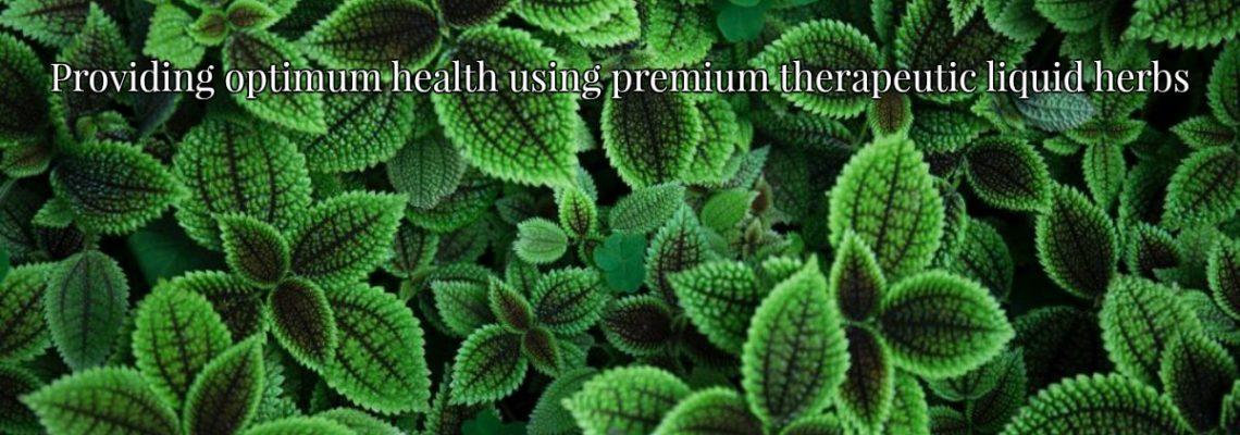 equine herbs, herbal medicne, liquid, extract, therapeautic, healing, premium