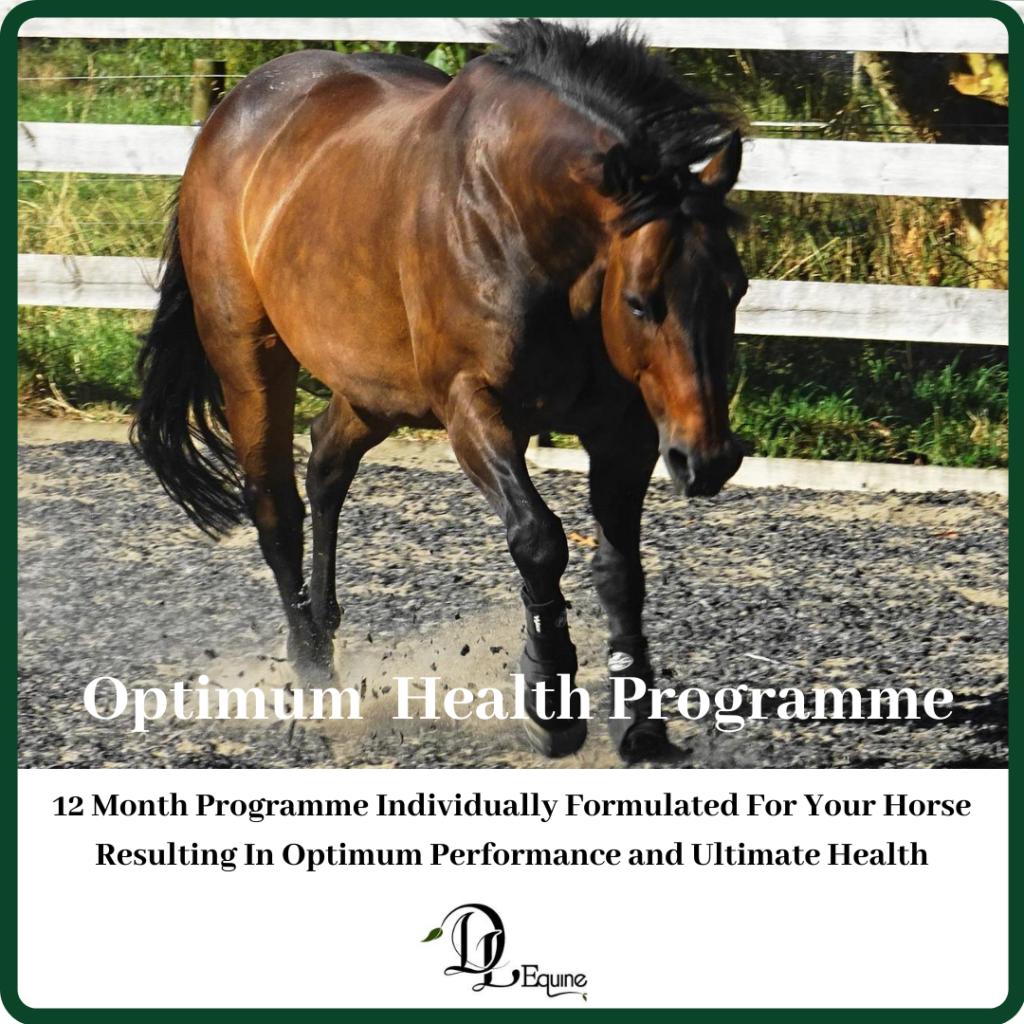 Optimum Horse health programme DL Equine