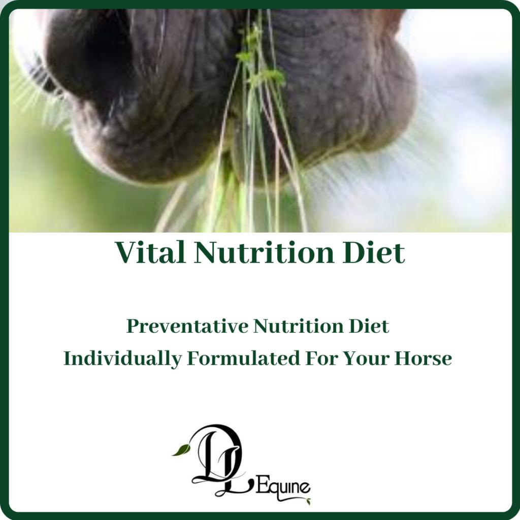 Vital Nutrition Diet July 2020 DL Equine