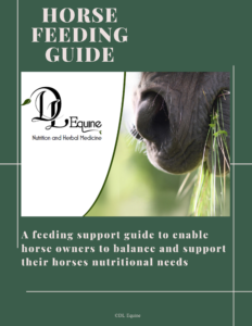 E book feeding guide
