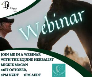 Equine Herbal Medicine Webinar